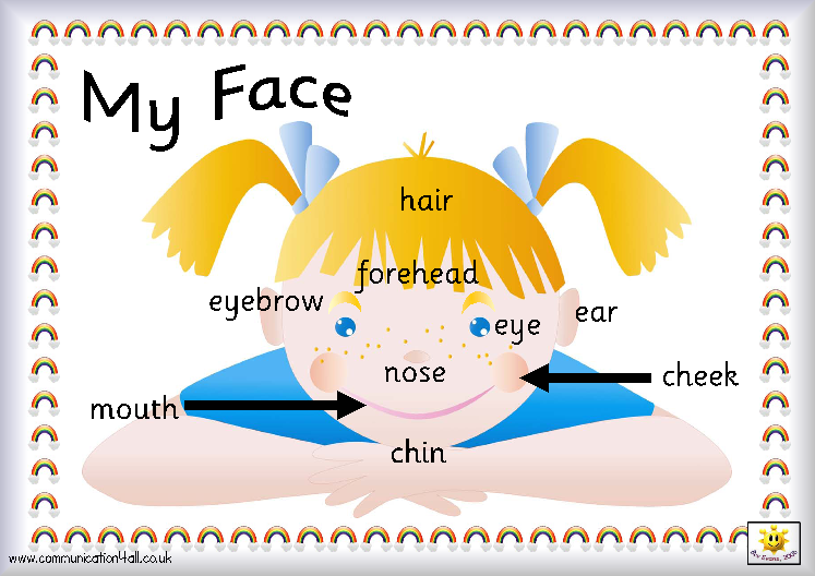 My Face - Las partes de la cara - English pa' kichitines